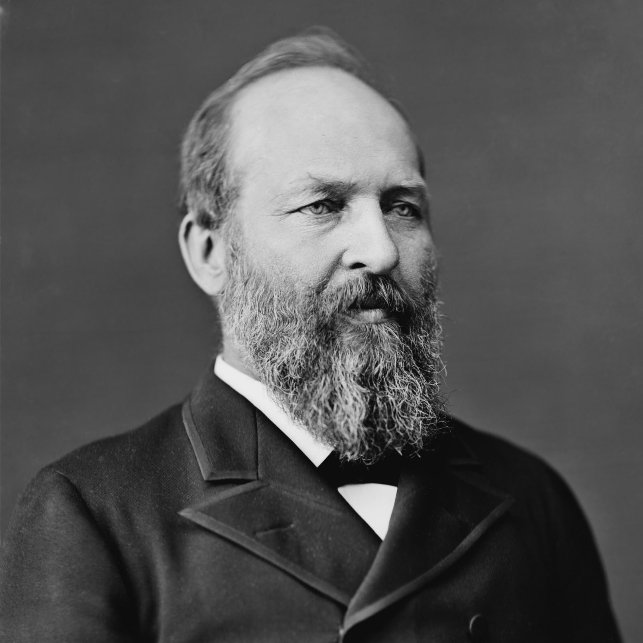 Portrait of James Garfield, the 20th President of the United States
