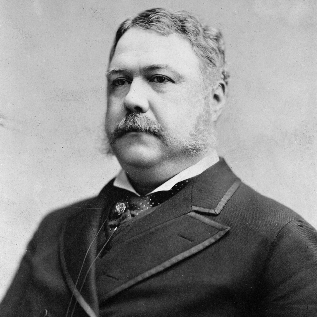 Portrait of Chester A. Arthur the 21st President of the United States