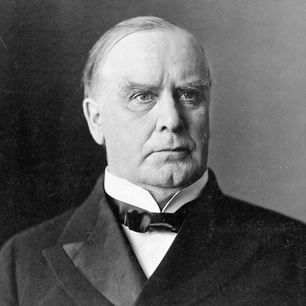 Portrait of William McKinley, the 25th President of the United States