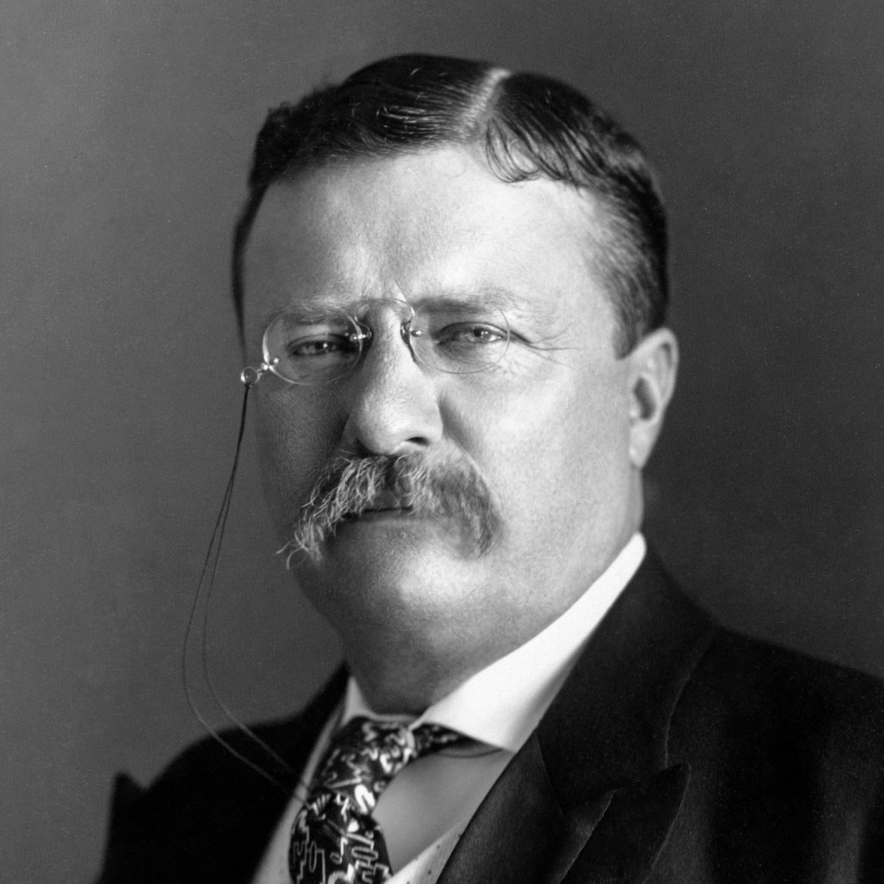 Portrait of Theodore Roosevelt, the 26th President of the United States