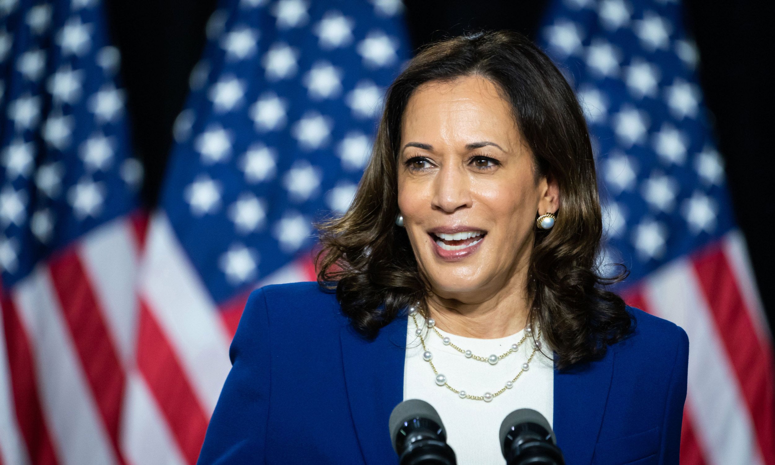 Kamala Harris: The Vice President